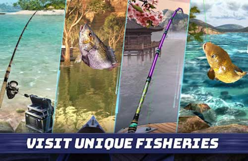 Fishing Clash Catching Fish Game Apk
