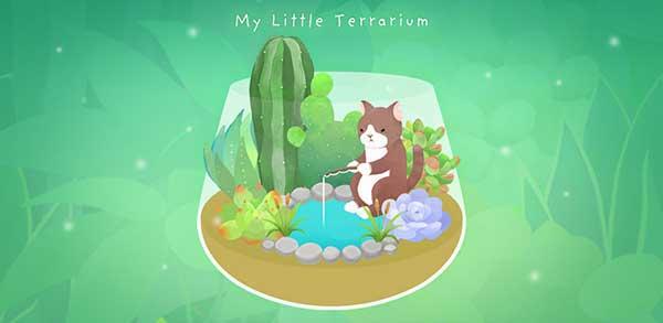 My Little Terrarium