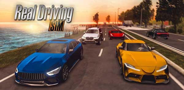 Real Driving Sim Mod